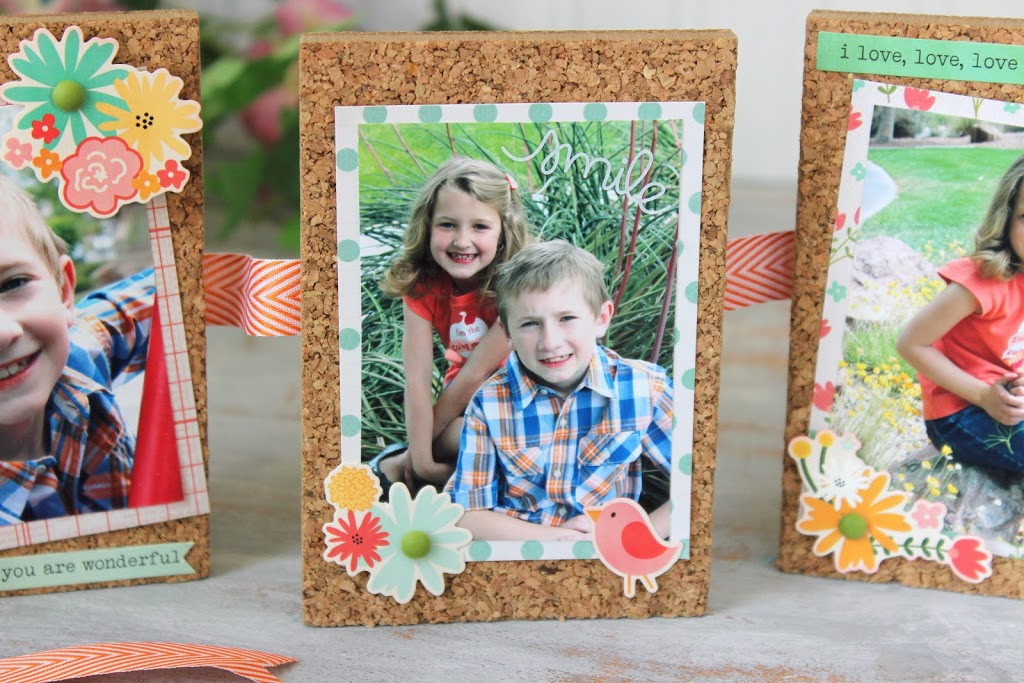 Cork Board Picture Frames